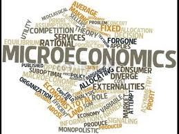 ekonomi mikro dini wahyuningsih