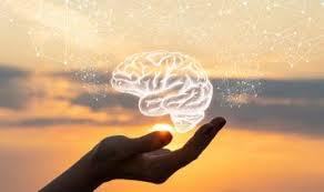 Natural Health Guide - Memory & Brain Boosting Herbs