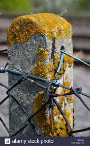 Post And Chain Fencing High Resolution Stock Photography And Images Alamy