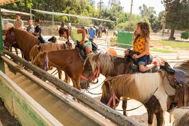 horseback riding in griffith