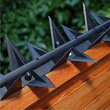 Stegastrip Fence Top Wall Spikes Garden Security Intruder Burglar Deterrent Anti Climb 2 5m Pack With Posts Amazon Co Uk Garden Outdoors