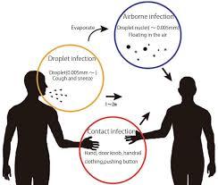Establishing quantitative evaluation method of contact infection ...
