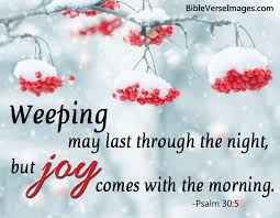 20 Bible Verses about Joy and Happiness - Bible Verse Images