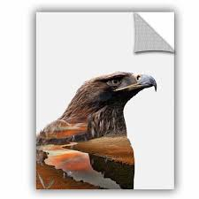 Artwall Clean Nature Eagle Removable Wall Decal Wayfair