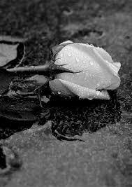 صور حزينة بدون كتابة للفراق بدون كلام عبارات للبنات للشباب عن الفراق اجمل الصور الحزينة خلفيات حزينه للموبايل للواتس للفيس Hd 2020 مربع