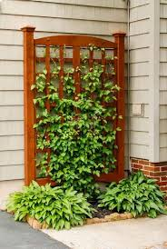 22 Best Diy Trellis Ideas Easy Garden Trellis Diy Guides