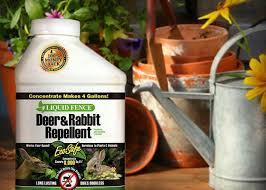 Outdoor Living Ideas The Home Depot Garden Pests Garden Club Pest Control