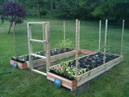 1a717658b12b6c58ecadd414272ad3b0 Jpg 640 480 Deer Resistant Garden Garden Layout Vegetable Vegetable Garden Layout Plan