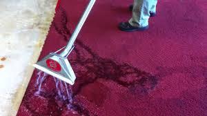 scotchgard carpet protector you