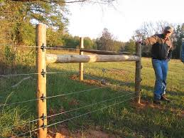 Fencing Costs And Effectiveness For Unusual Challenges On Pasture