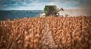 Pequeno e médio produtor são prioridade no Plano Safra 2019/2020 ...
