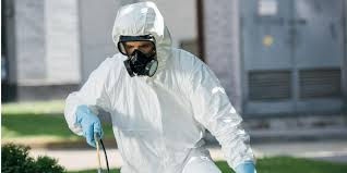 How to Find the Best Pest Control Service in Riverside, CA -