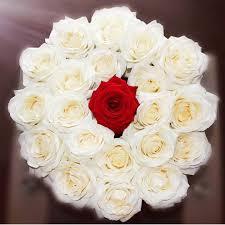 الحصول على الانترنت أفضل موقع تصميم الخالدة صور باقات الزهور