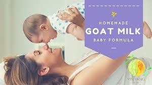 homemade organic baby formula recipe