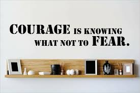Design With Vinyl Courage Is Knowing What Not To Fear Wall Decal Wayfair