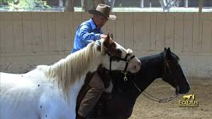 Monty Roberts Equus Online University |