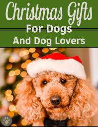 10 Perfect Christmas Gifts For Doodle Lovers Timberidge Goldendoodles