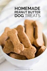 homemade dog treats eships and