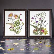 pressed flower art so easy with