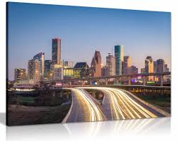 Houston Texas Skyline Canvas Wall Art Picture Print Home Decor Panther Print