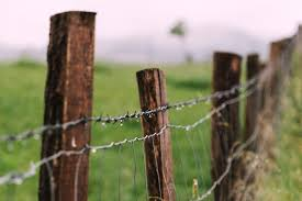 Shared Fences In California Whose Responsibility Law Offices Of Christine Miller