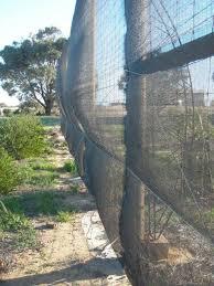 Forum Windbreak Fence Probem