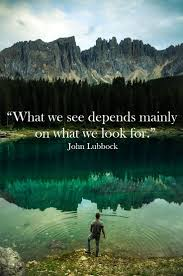 """what we see depends mainly on what we look for """" john lubbock"""