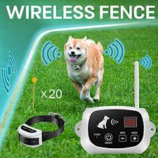 Best Wireless Fence For Dogs Report On Top Selling Models Of 2020