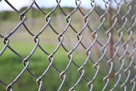 Free Images Grass Branch Fence Barbed Wire Leaf Wall Green Metal Security Material Twig Net Safety Barrier Jail Protection Border Secure Defense Outdoor Structure Chain Link Fencing Wire Fencing Home Fencing