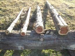 Old Cedar Fence Posts Cedar Fence Posts In 2020 Cedar Fence Posts Cedar Fence Fence Post