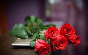 صباح الورد الأحمر Google Groups