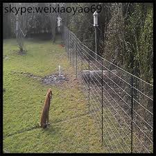 Deer Fence Deer Fence Height Deer Fence Netting Deer Skull Mount Deer Barrier Poly Deer Fence Electric Deer Fence
