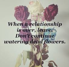 quotes about dead flowers quotes