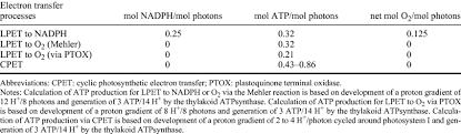 adenosine triphosp atp