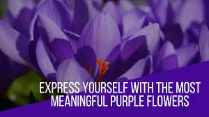 most meaningful purple flowers