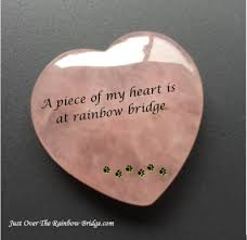 pet sympathy quotes condolence cards by just over the rainbow bridge