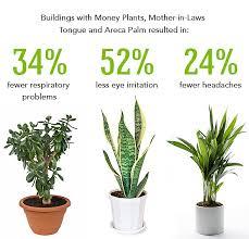indoor gardening an environment