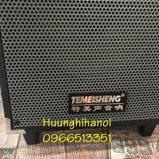 Loa kéo karaoke mini hát cực hay giá rẻ Temeisheng A8-2T, thùng gỗ tăng kèm  1 micro không dây âm thanh cưc hay