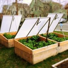 search for the perfect cold frame