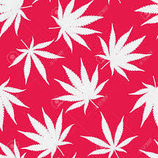red weed wallpaper shared by amyjames