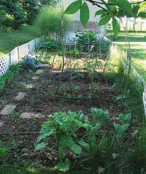 home gardening uga cooperative extension