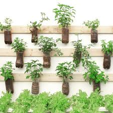 15 Creative Ways To Hang A Plant Outdoors The Family Handyman