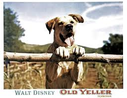 famous movie dogs we wish were our pets