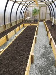 beds in greenhouse