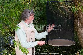 Nature Picture Library Scientist Ivan Wright collecting insects ...