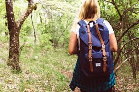 Free picture: girl, forest, wood, nature, hiking, backpack, shirt