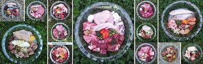 diy raw dog food dogs first raw dog food