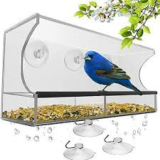 20 best gifts for bird from