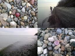 beach glass beauties jeanne kollecker