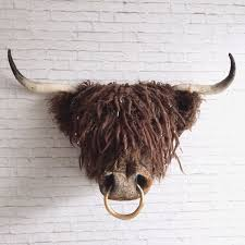 angus faux taxidermy highland coo faux